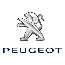 Peugeot badge