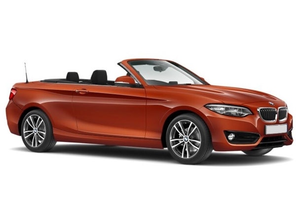 BMW2 SERIES CONVERTIBLE 218i M Sport 2dr [Nav]